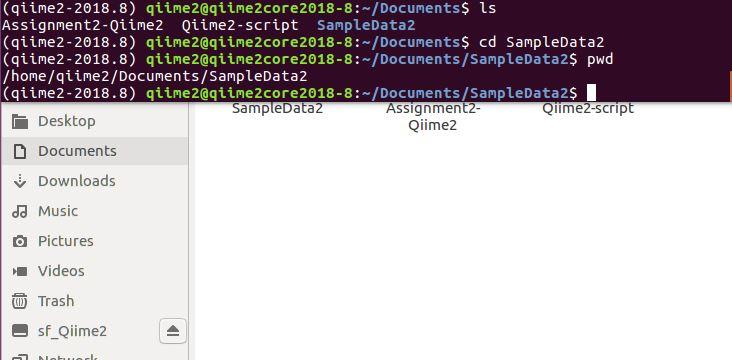 Qiime2 its