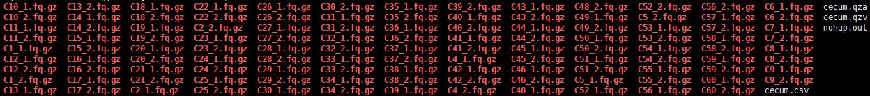 Plugin error from dada2--return code1) - User Support