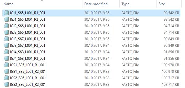 Fast Q File